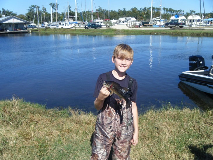 Bass assassins for North shore fishing report